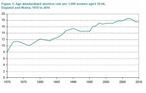 abortion facts for essay